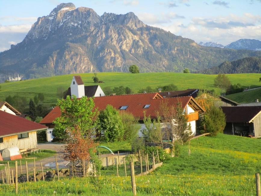 Bauernhof mit Schloß Neuschwanstein im Hintergrund