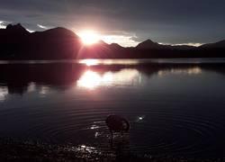 Königlicher Sonnenuntergang