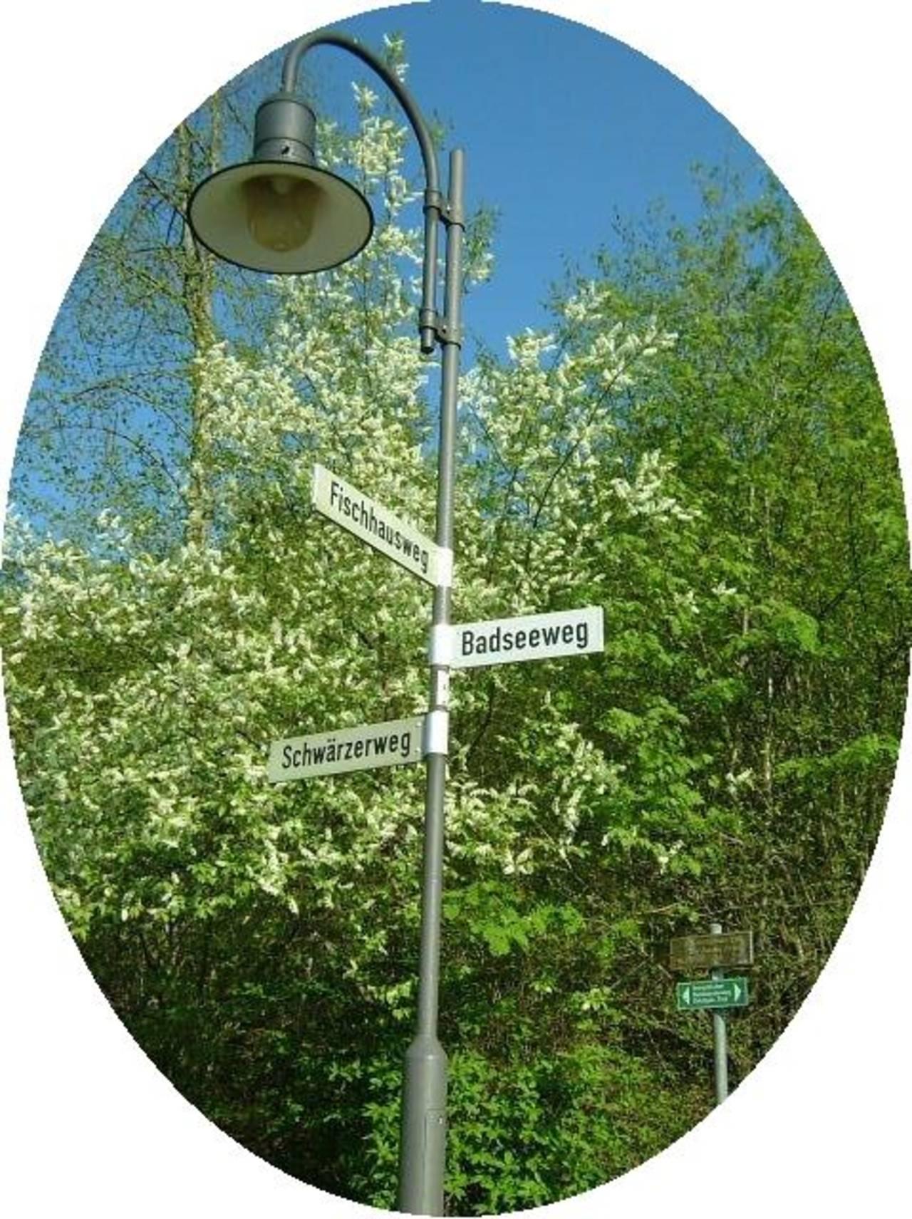 Frühjahr wird´s am Badseeweg ...