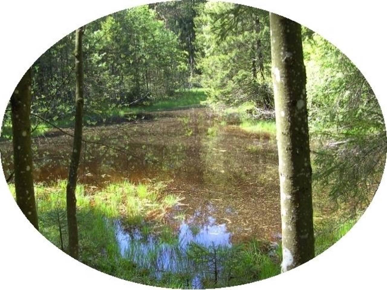 Der sechste See im Tal der Sinne ...