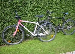Fahrräder kostenlos