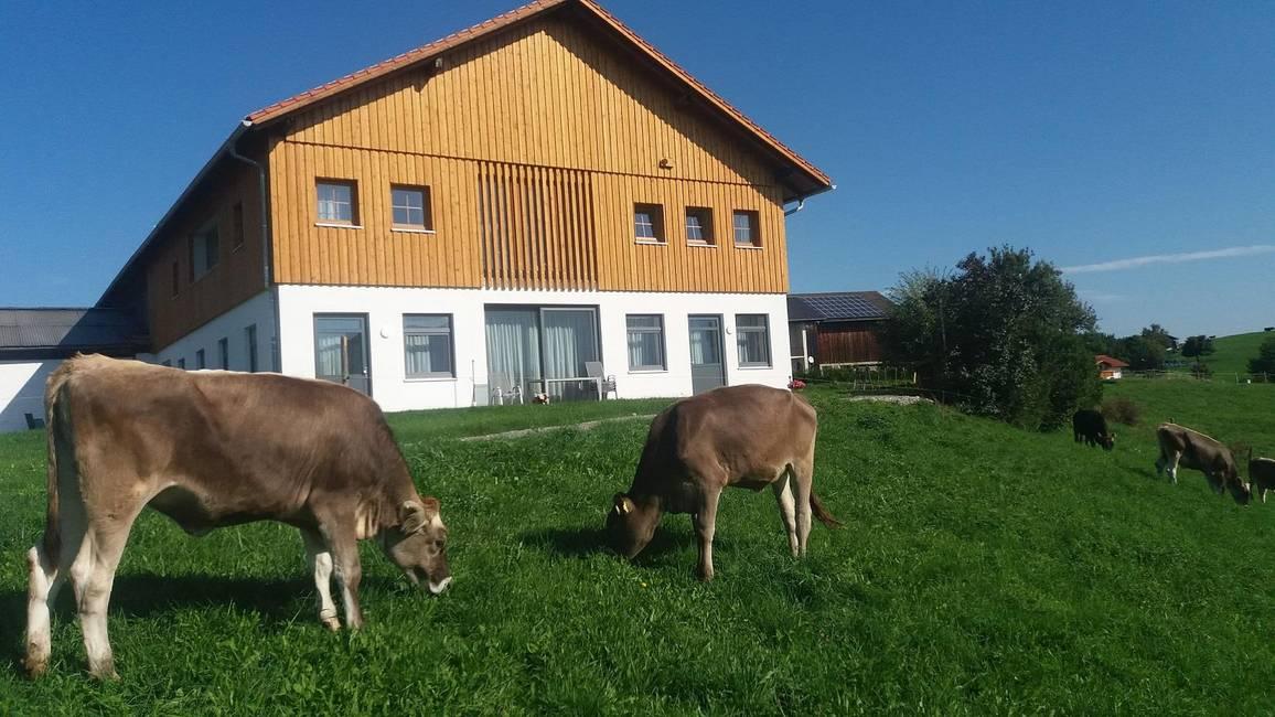 Außenansicht der Wohnungen Aggenstein und Thanelle