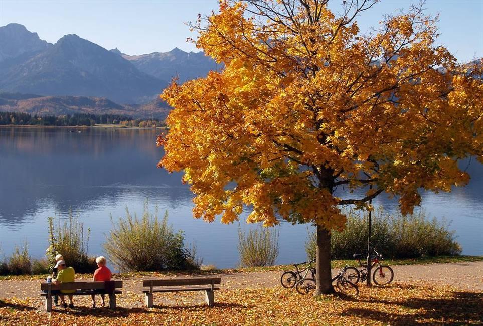 Herbstspaziergang am Hopfensee