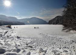 wintertag-am-alpsee