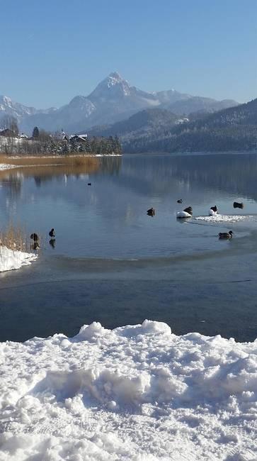 Weißensee mit Säuling