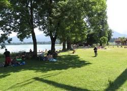 Schattige Liegewiese am Forggensee zum Entspannen