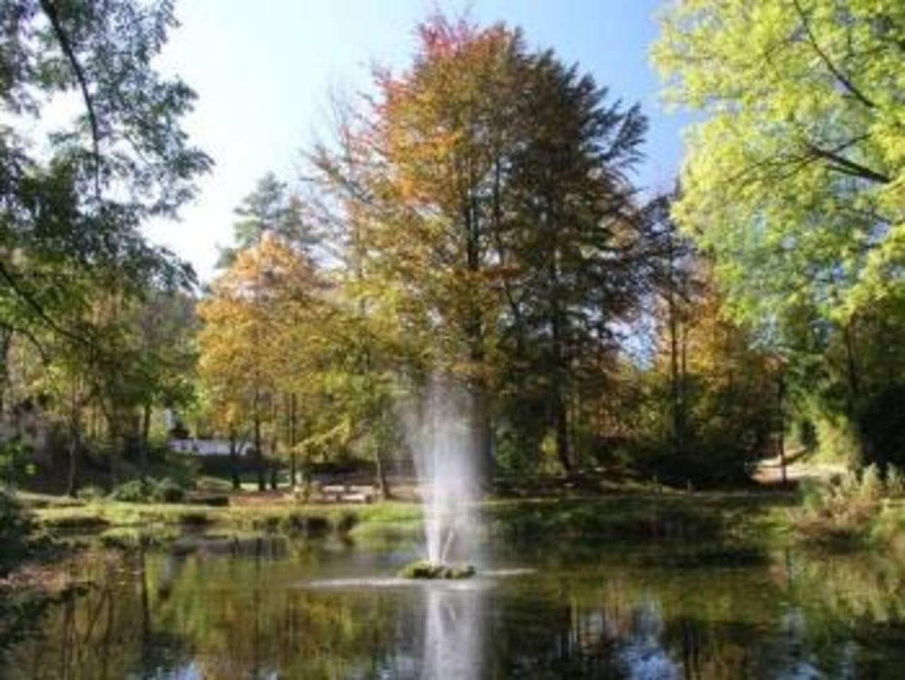 Weiher -Herbst-