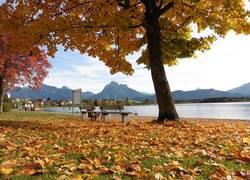Uferpromenade im Herbst
