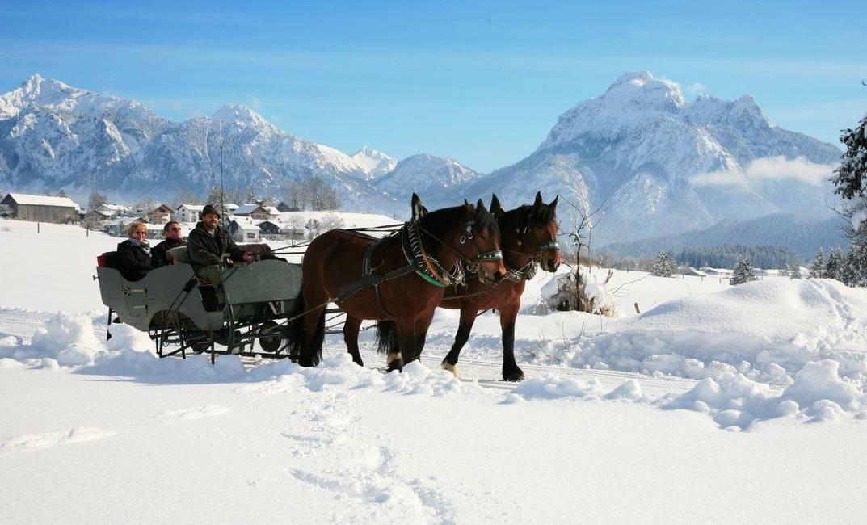 Unser Pferdeschlitten - Romantik pur!