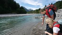 Der Lechweg verläuft oft direkt am Ufer des Lech