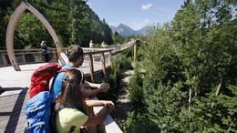 Baumkronenweg im Walderlebniszentrum Füssen