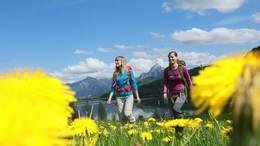 Wandern am Weißensee bei Füssen während der Löwenzahnblüte